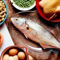 نقش پروتئین ها،چربی ها،کربوهیدرات ها در بدن چیست؟